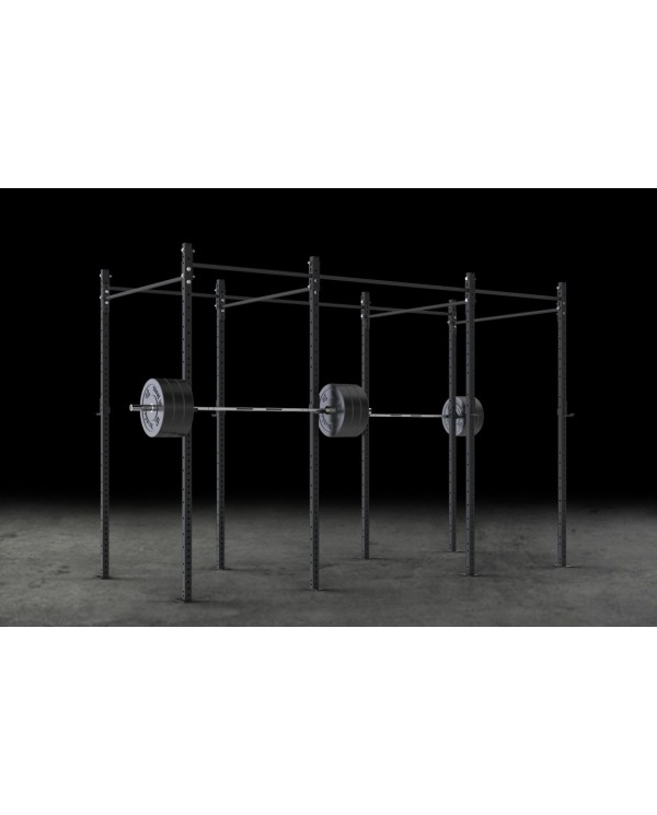 Rig cage I T-REX 2